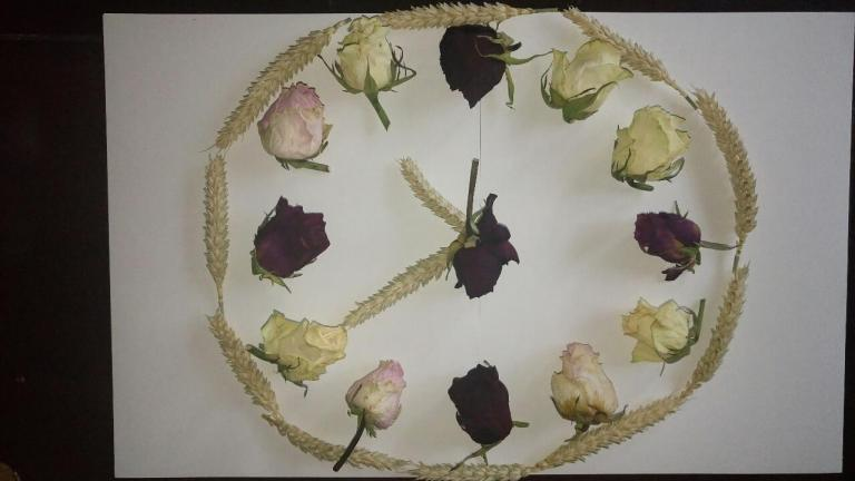"""""""Horloge biologique"""""""